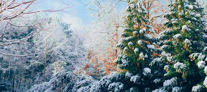 Winter is a wonderful time to enjoy shopping, dining, and the wonderful sights in New Hope, Bucks County PA